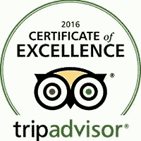 trip-advisor-awards-recognition-abes-place-tap-grill-clearwater-florida